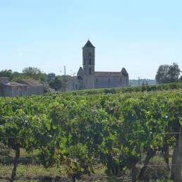 Vignobles Berrouet Vieux Ch. Saint Andre foto