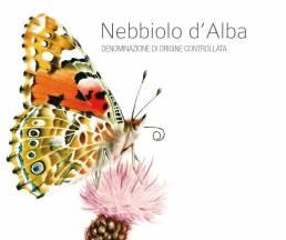 Camparo sommerfugletikett Nebiiolo d'Alba