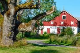 Veholt Mikrobrygg foto av gården
